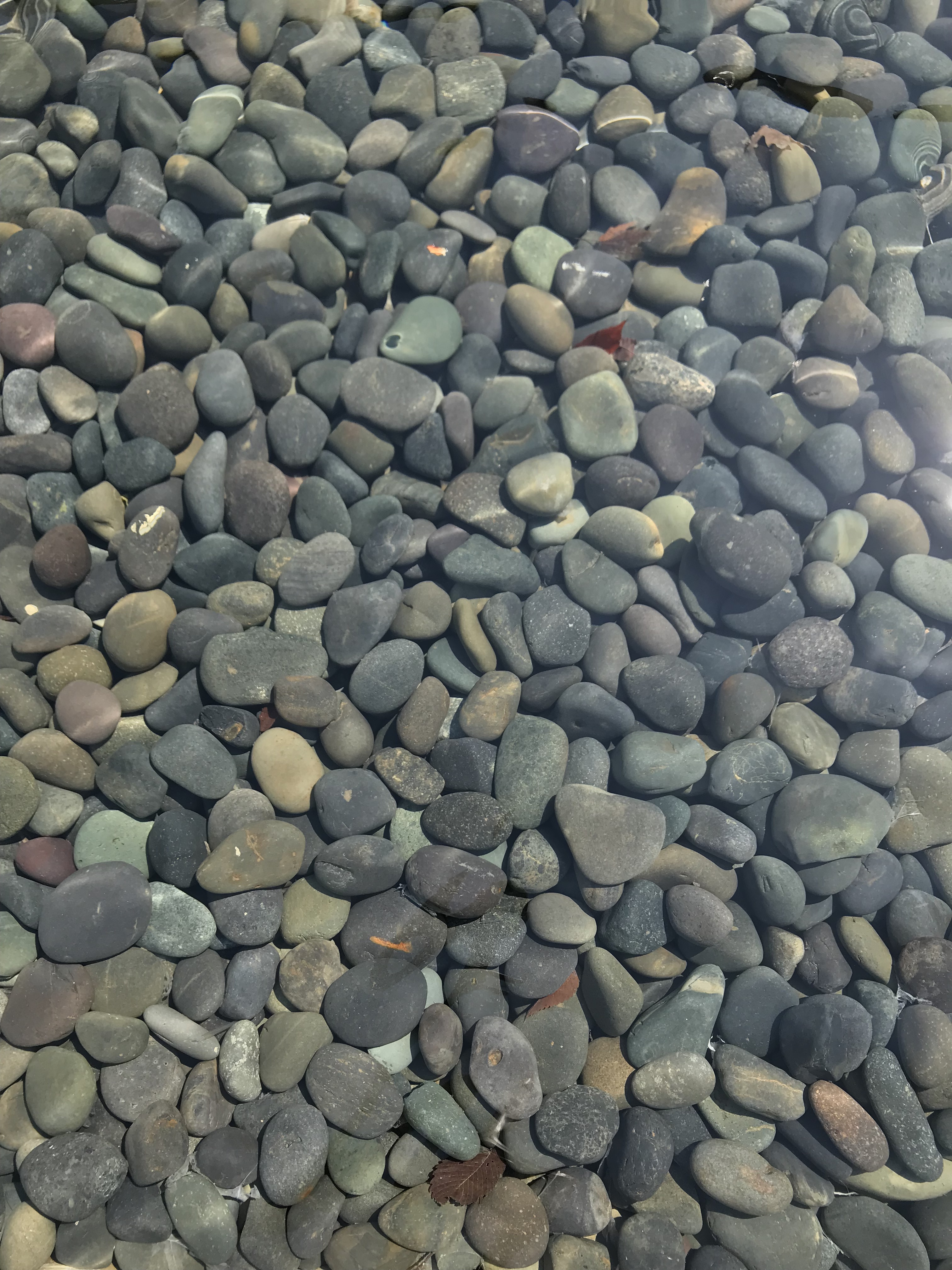 Peaceful clear shallow pool, with smooth stones